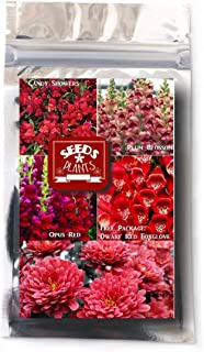 snapdragon wholesale