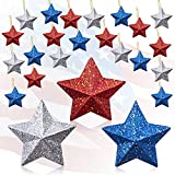24 Pcs 4th of July Hanging Stars Ornaments USA Stars Blue Red and Silver Hanging America Glitter Stars Home Decor Patriotic Decorations for Independence Day Memorial Day,Flag Day,Patriotic Party