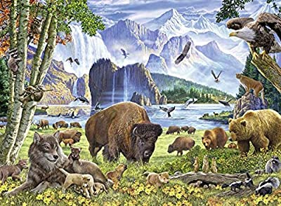 Ravensburger 82055 Great Outdoors Puzzle Series: North American Nature | 300 PC Puzzles for Adults – Every Piece is Unique, Softclick Technology Means Pieces Fit Together from Ravensburger
