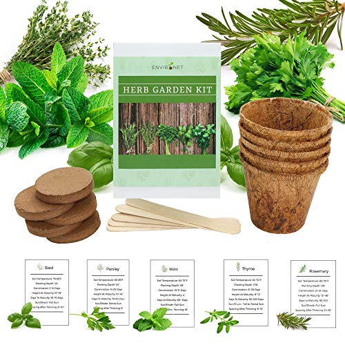 Environet Herb Garden Kit. Seed Starter Kit Indoor. Grow 5 Different Herbs - Basil, Mint, Parsley, Thyme and Rosemary from Seeds at Home. Gardening and Home Decoration Gifts