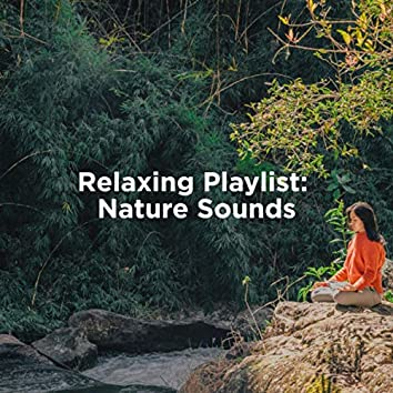 Relaxing Playlist: Nature Sounds