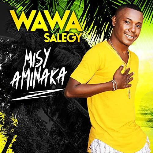 Wawa Salegy