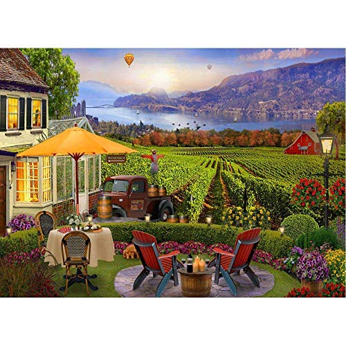 Paint by Numbers for Adults Kids Beginners, DIY Acrylic Oil Painting Kit, Creative Gifts for home decoration Garden scarecrow Paint by Numbers Kits 16 x 20 inch