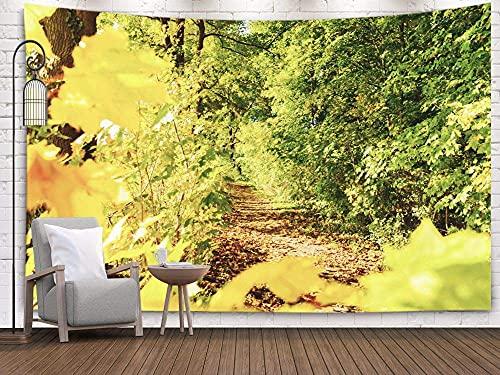Couleurs d'automne, tapisserie d'art, tapisserie murale, tapisseries Deacutecor salon chambre à coucher pour la maison à l'intérieur par imprimé pour d'un chemin forestier avec des arbres colorés d'au