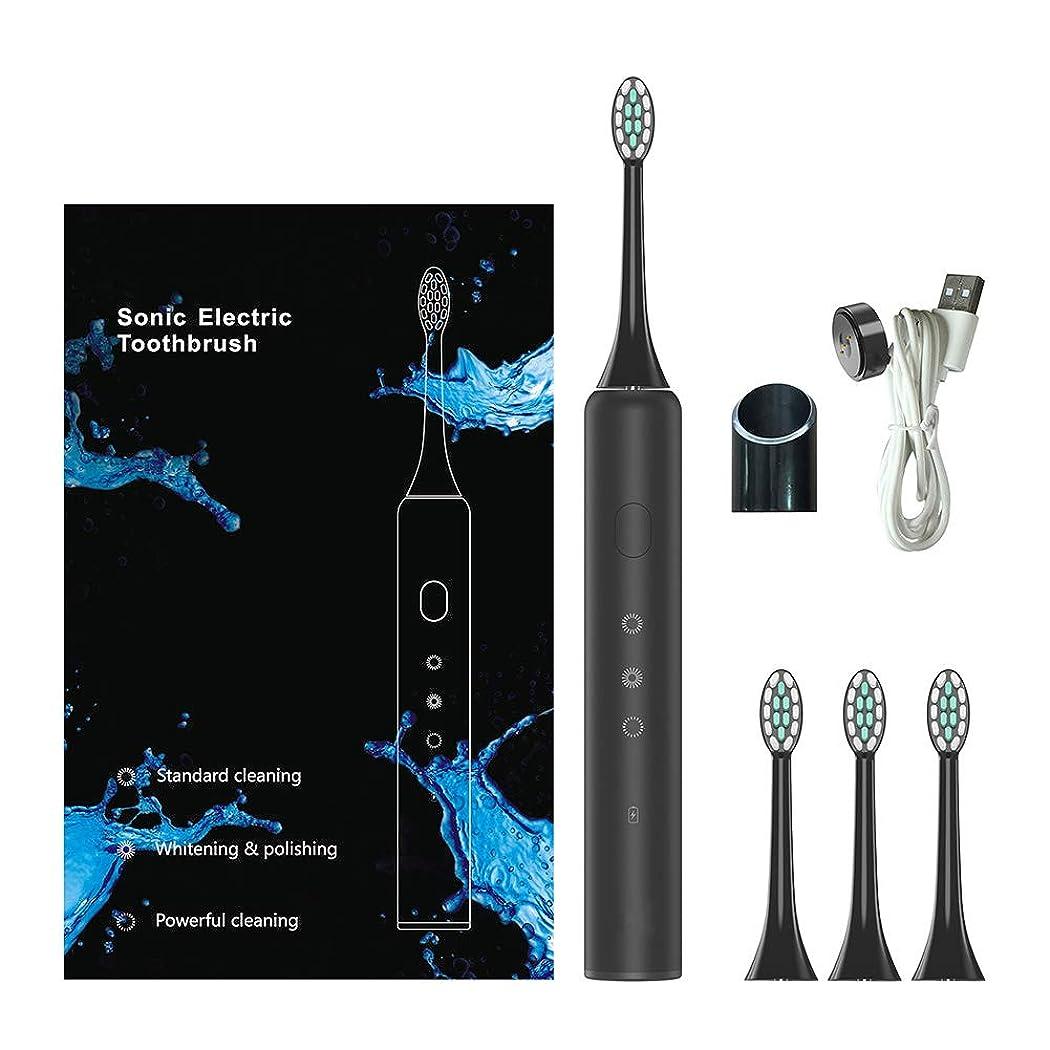 ソニック電動歯ブラシ、電動歯ブラシ、充電式歯ブラシ磁気誘導充電防水3つのブラッシングモード
