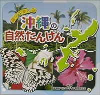 親子で楽しむ沖縄の自然たんけん
