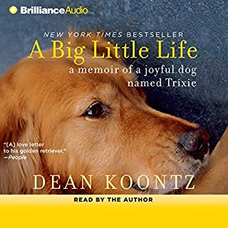 A Big Little Life cover art
