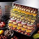 Insalatiera in acciaio inox con timer e regolatore di temperatura 35-70 Celsius 1000 W essiccatore con 10 cassetti disidratatore per alimenti, carne, verdure, frutta, 41,5 x 37 x 54 cm (EU)