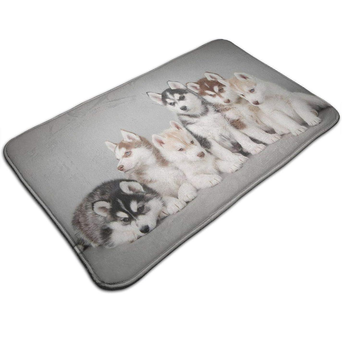理容室錫摩擦Absorben Anti-Skid Toilet Shower Mat Indoor/Outdoor/Frontdoor/Home Decor Perfect for Bedroom/Livingroom/Kitchen/Patio Vintage Wooden Door Dogs Husky