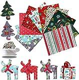 10 Piezas Navidad Tela De Algodón,Tela de Algodón Patchwork,Telas Patchwork,Tela Navideña para DIY Manualidades de Costura de Navidad (B)