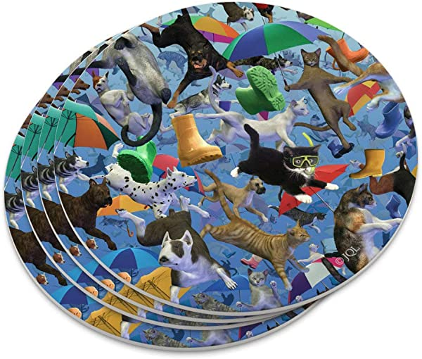 Raining Cats And Dogs Novelty Coaster Set