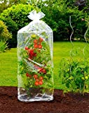 TempsL - Tomatenhauben, 130 cm (2 Stück)
