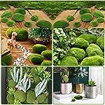 lnimi 36pcs 5 size artificial moss rocks decorative green moss balls fake moss decor for floral arrangements gardens