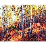 Pintura de bricolaje por números pintura al óleo pintada a mano cuadro de paisaje pintura dibujo sobre lienzo decoración del hogar regalo único A18 40x50cm