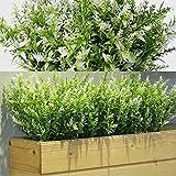12 Manojos Arbustos Artificiales Lavanda Verde Artificial Flores Artificiales Plantas Resistentes a Rayos UV de Exterior para Arreglo Floral, Centro de Mesa, Decoración Jardín (Blanco)