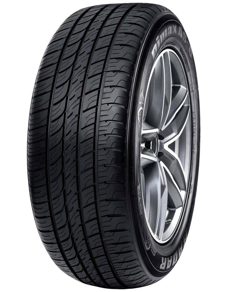 245//35ZR20 95W Radar Tires Dimax AS-8 Touring Radial Tire