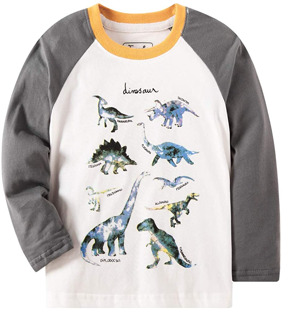Bleubell Teddlor Boys T-Rex Long Sleeve Dinosaur T Shirt