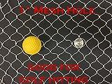 Many Sizes, New Netting Fish Fishing Net for Golf Backstop, Hockey, La Crosse, Barrier, Sports (10ft x 25ft)