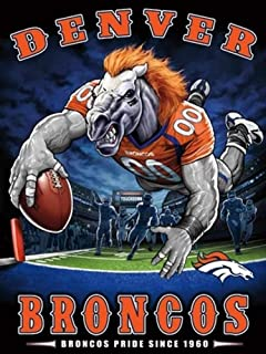 DIY 5D Diamond Painting Kits for Adults Beginner Gift for NFL Denver Broncos Team Home Wall Decor 11.8x15.8 in
