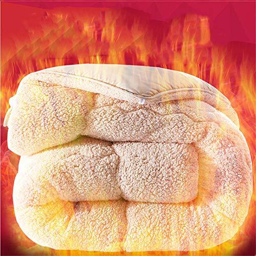 Hxsm Winter Lamb Velvet Fabric Quilt, Super Soft and Warm Hollowfiber Filled Quilt,Hygroscopic Breathable Cashmere Quilt Anti-Allergy Duvet(Single,Double)-220 * 240