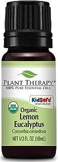 Best eucalyptus citriodora essential oil Reviews