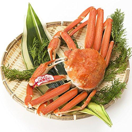 日本海市場 贈答用タグ付き 特上松葉ガニ(ずわいがに姿) 中サイズ1枚(茹で600g前後)「本物」の松葉ガニを産地直送でお届けします お歳暮 ギフト対応