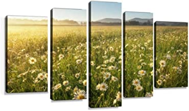 Daisies in the field near the mountains Meadow with flowers at Modern Art Painting set Digital Print Picture on Canvas Framed Artwork Wall Decor Living Room Office Bedroom 5 Pieces