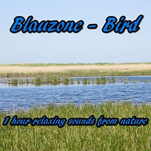 Blauzone