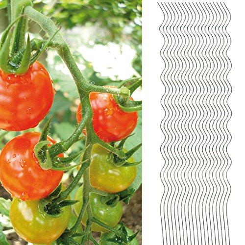 20x Tomatenspiralstab 180cm voll verzinkt Tomatenstab Tomaten Ranke Pflanzstab Stahl Profi Qualität (1-50 Stück) Tomatenspiralstäbe