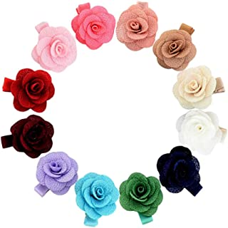 inSowni 12 Pack Flower Alligator Hair Clips Barrettes Fully Lined for Infants Baby Girls Toddlers Kids (12PCS S2)