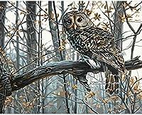 枝の上の子供のフクロウの大人のデジタル絵画はあなた自身のDIY油絵をアクリル絵の具で飾り、壁を絵筆で飾る40x50cmフレームレス