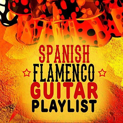Spanish Guitar Music, Acoustic Guitars & Flamenco Guitar Masters