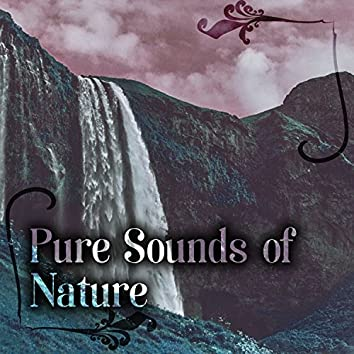 Pure Sounds of Nature – Watre Sounds and Soothing Music for Relaxation