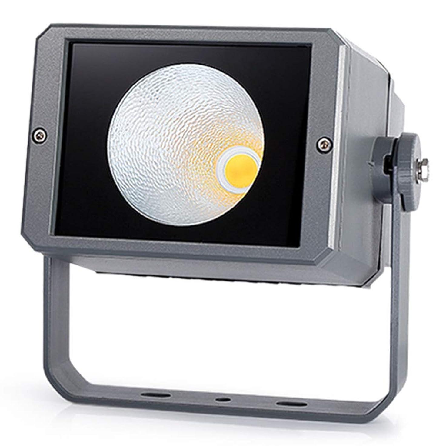 深遠非アクティブ絶え間ないLEDプロジェクトフラッドライト、専用屋外の安全防水投光器スポットライト緑化防錆高速熱放散 (Color : Warm light, Size : 30W)