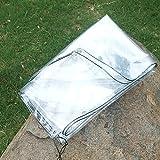LHR Lona impermeable resistente transparente con ojales de metal, lona multiusos impermeable para invernadero (tamaño: 2 x 4 m)