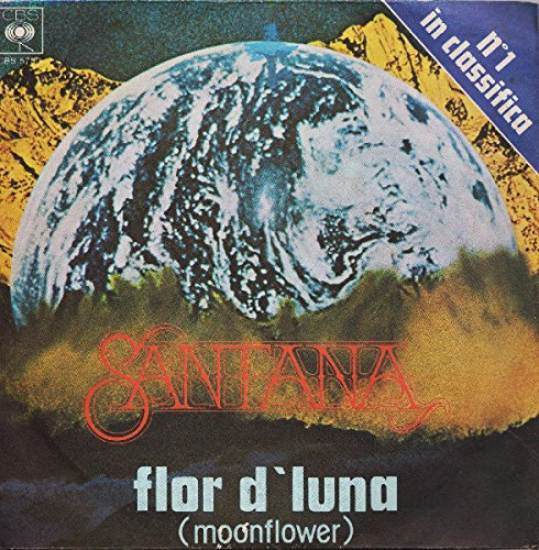 Flor D'Luna (Moonflower)