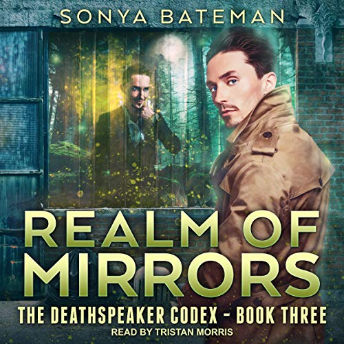 Realm of Mirrors cover art