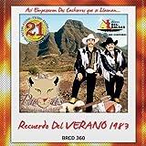Pumas De Huetamo Michoacan (21 Exitos Del Recuerdo)360 by Los Pumas De Huetamo Michoacan (2011-05-03)