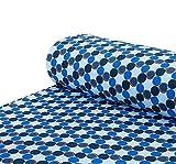 Nadeltraum Softshell Stoff kuschelweich Kreise blau -