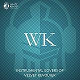 Instrumental Covers of Velvet Revolver