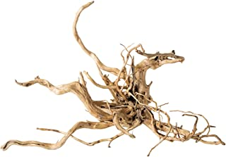 Best spider root driftwood Reviews