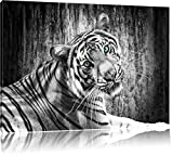 schöner neugieriger Tiger schwarz/weiß Format: 80x60 auf Leinwand, XXL riesige Bilder fertig gerahmt mit Keilrahmen, Kunstdruck auf Wandbild mit Rahmen, günstiger als Gemälde oder Ölbild, kein Poster oder Plakat