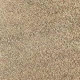 洗い砂 さくさくタイプ 砂場の砂 庭 ガーデニング 砂場 砂 遊び砂 荒目 約2mm以下 200kg 大量 (200)