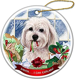 Cheyan White Havanese Dog Porcelain Hanging Ornament Pet Gift Santa I Can Explain for Christmas Tree and Year Round