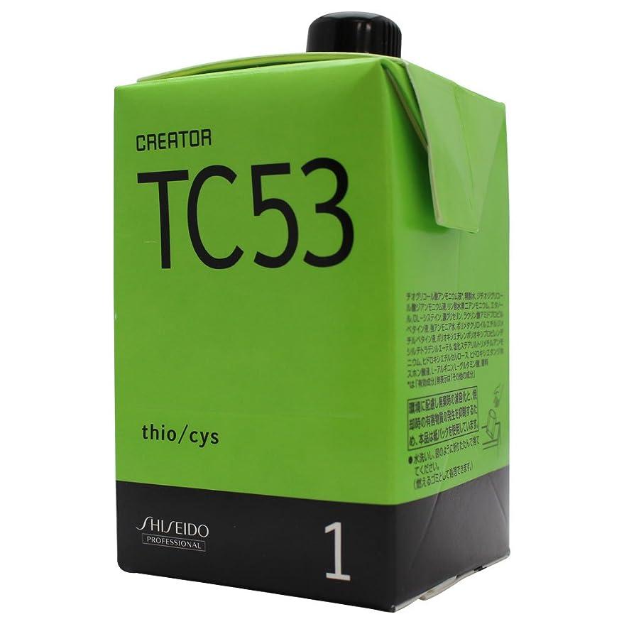 体系的にフロント文献資生堂 クリエイター TC53 第1剤 400ml