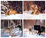 Impact-Poster Galerie Wolf Wanddeko, Kunstdruck, Schnee,