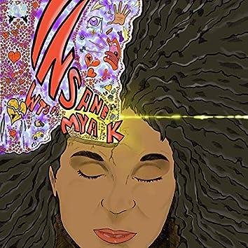 In Sane (feat. Mya K) [Charles Jay Radio Mix]