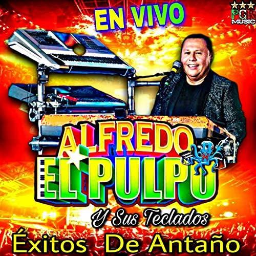 Exitos de Antaño de Alfredo El Pulpo Y Sus Teclados en Amazon ...