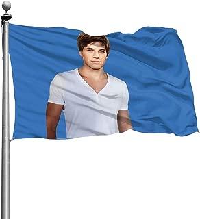 beverly hills flag
