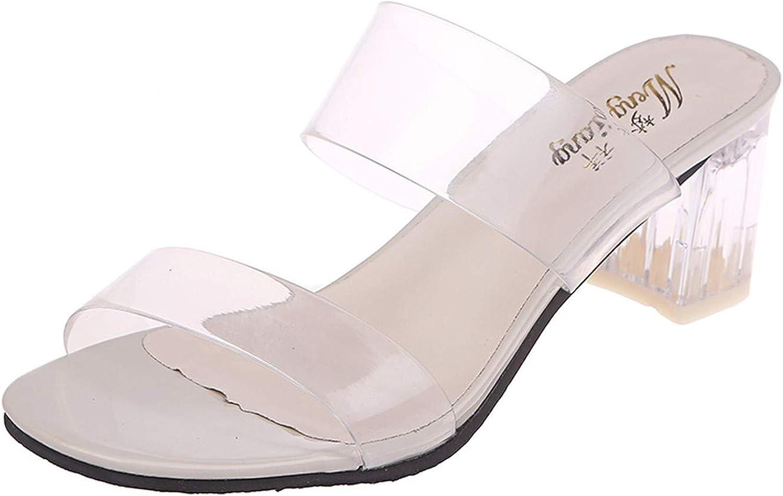 HANBINGPO 2019 Clear Heels Slippers Women Sandals Summer Transparent shoes Square High Heels Pumps